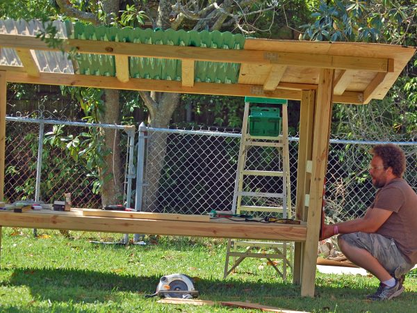 How to Build a Chicken Coop for profitable enterprise